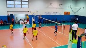 Team Volley - Gestioni Partinico